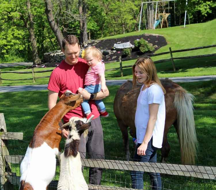 Family Farm vacation